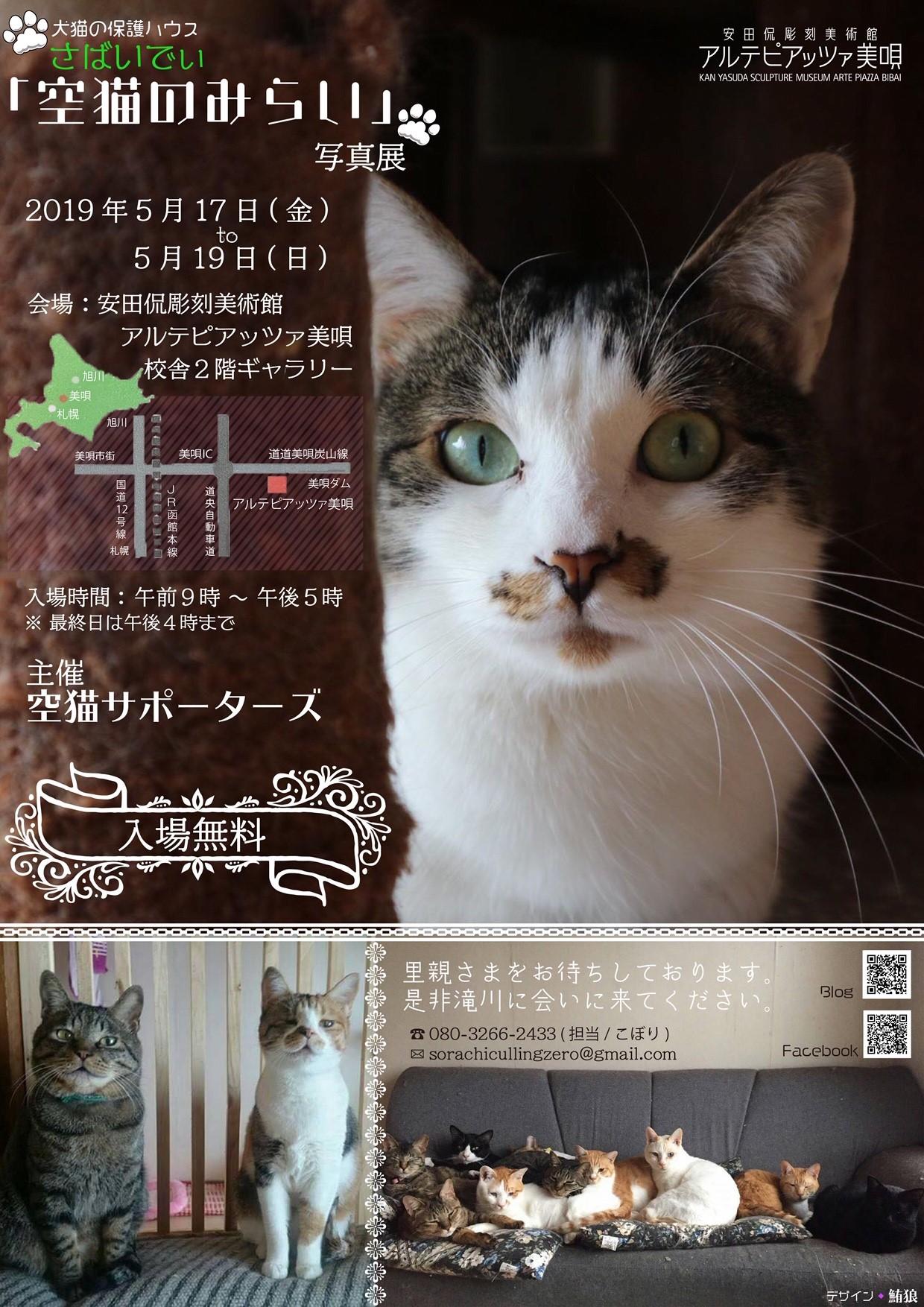 さばいでぃ「空猫のみらい」写真展